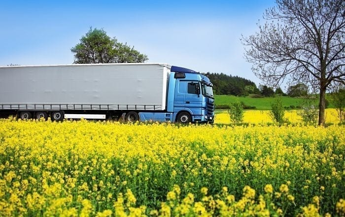 RME Biodiesel