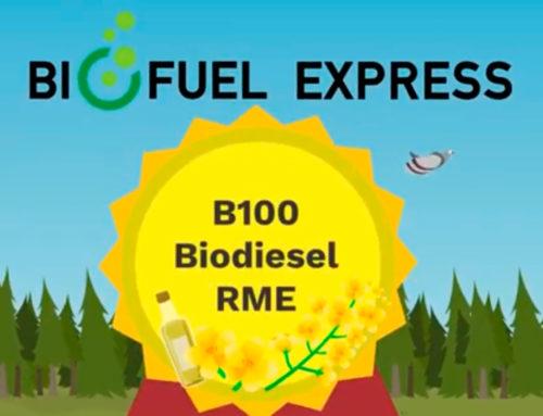 Vilka egenskaper har B100 Biodiesel RME?