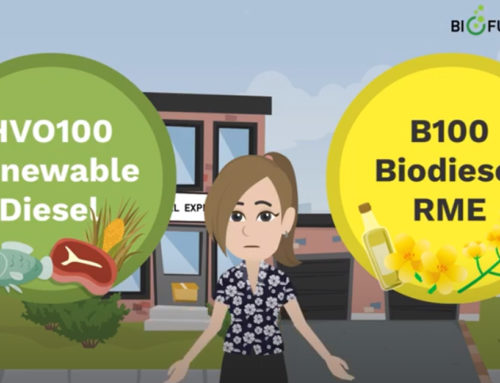 HVO100 Renewable Diesel and B100 Biodiesel RME – Do you know the differences?
